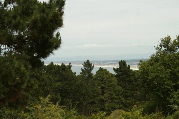 Vista de Monterey