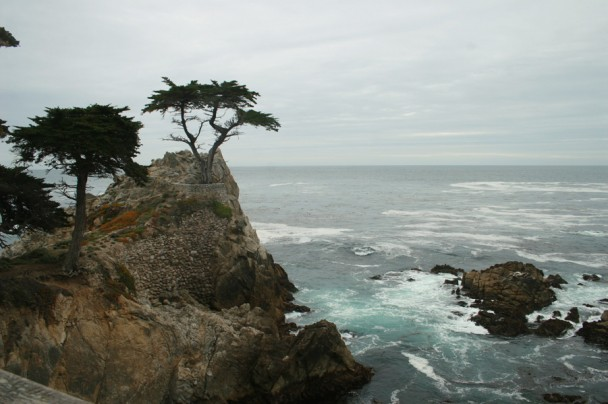 Vista do Lone Cypress