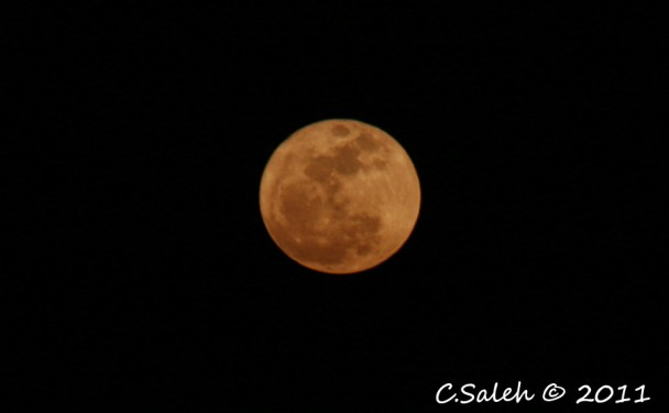 magestic moon