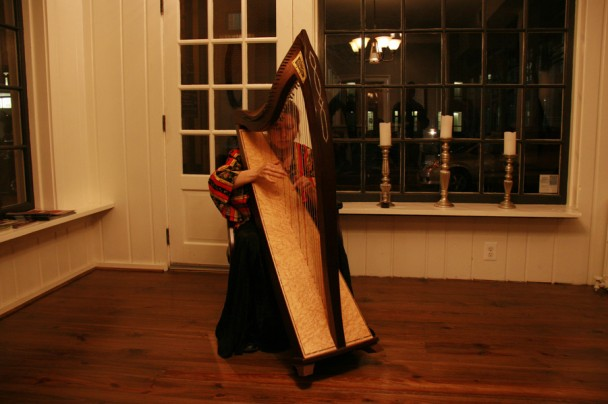 A harpista