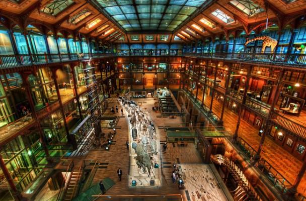 Museu de Historia Natural em Paris