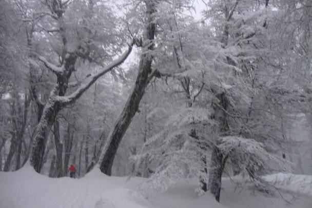 Esqui nordico no Refugio Neumeyer