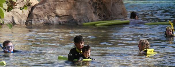 discovery_cove_nadando