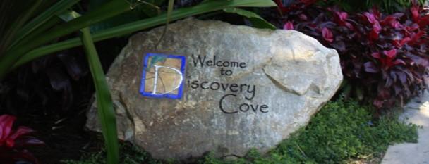 Bem vindos ao Discovery Cove