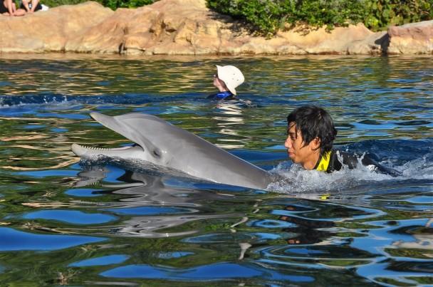 Nick nadando com o golfinho