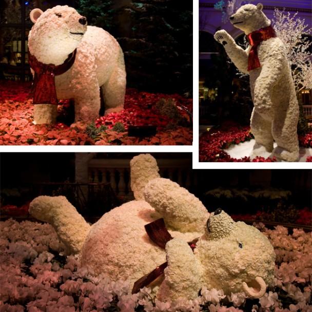 Ursos de flores