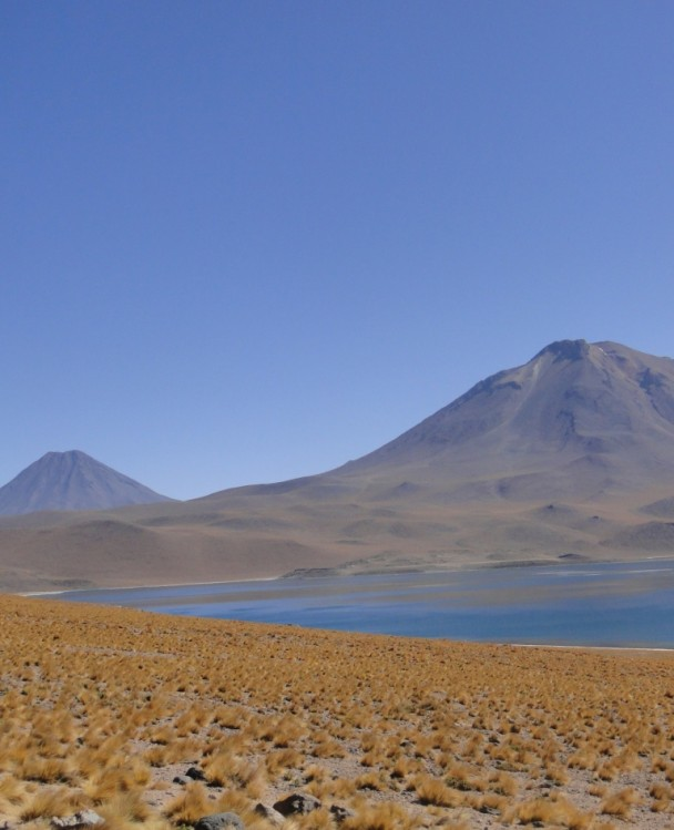 lagunasaltiplanicas-608x749