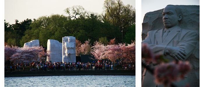 Martin Luther King durante Cherry Blossoms