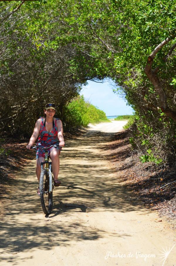 Explorando a ilha Isabela de bike