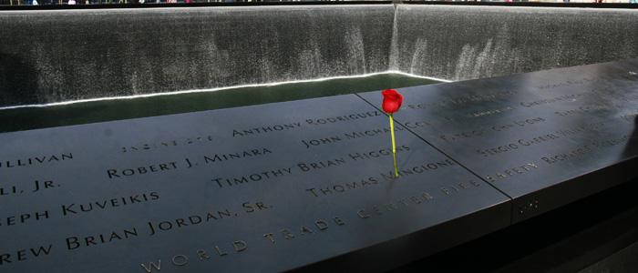 911_Memorial_rose