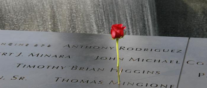 Uma rosa deixada no memorial