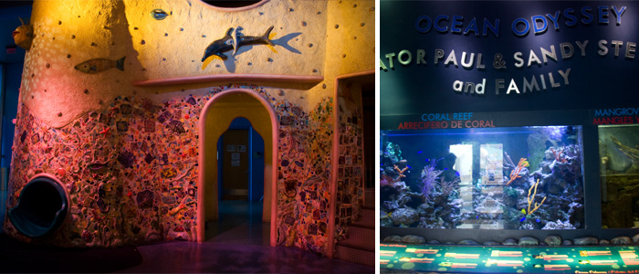 Miami_Childrens_museum_ocean