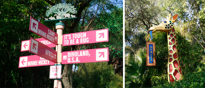Animal_Kingdom_Placas