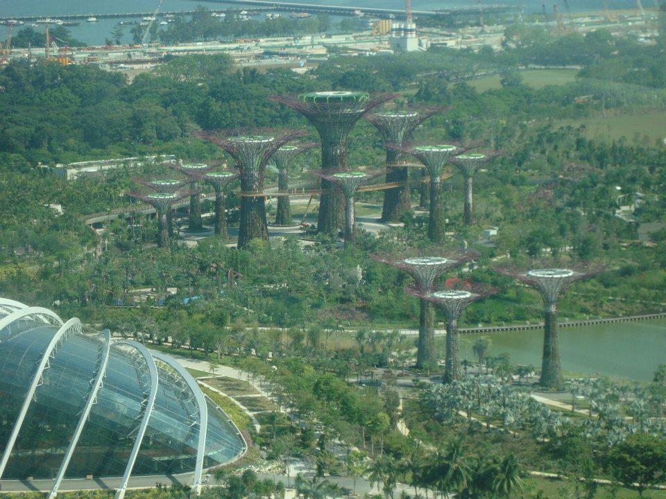 Espetacular a vista da Singapore Flyer