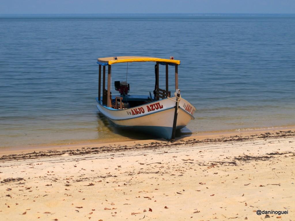 1. Caribe Amazonico