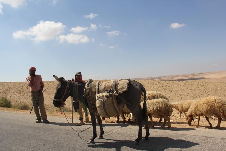 Beduino falando no celular