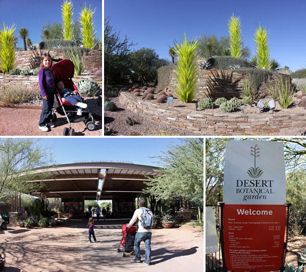 chegando no desert botanical gardens