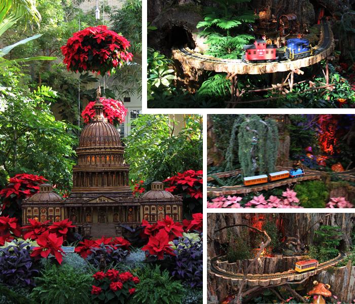 Jardimbotanicotrem