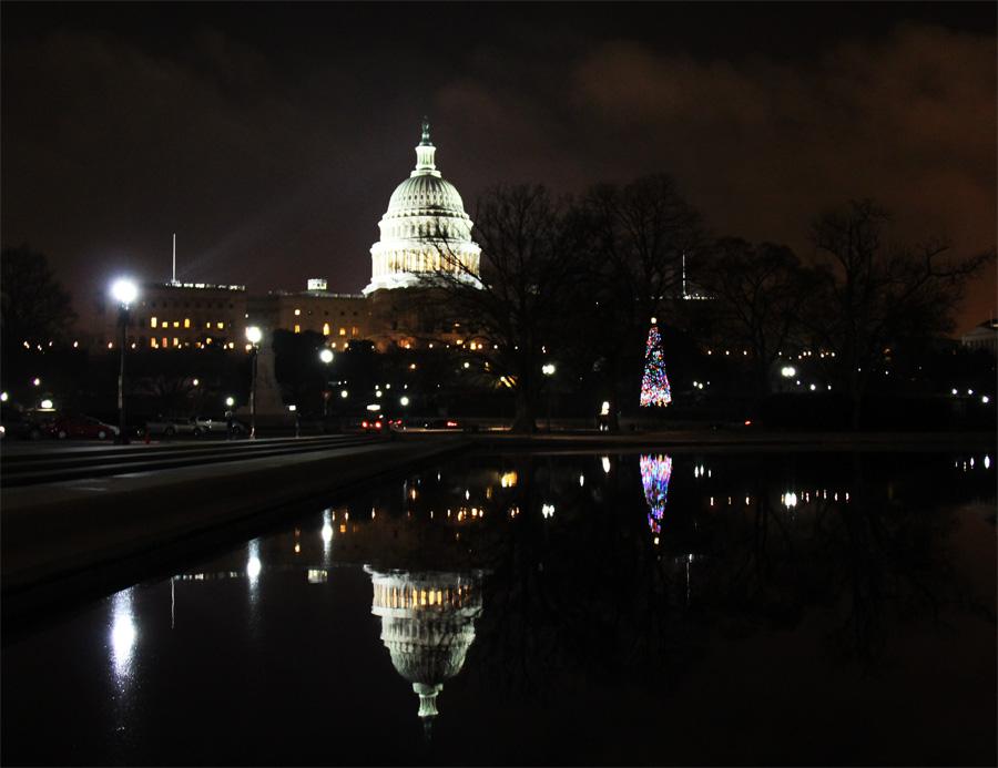 Reflexo do Capitolio e Arvore