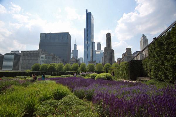 Lurie Garden no Millenium Park em maio