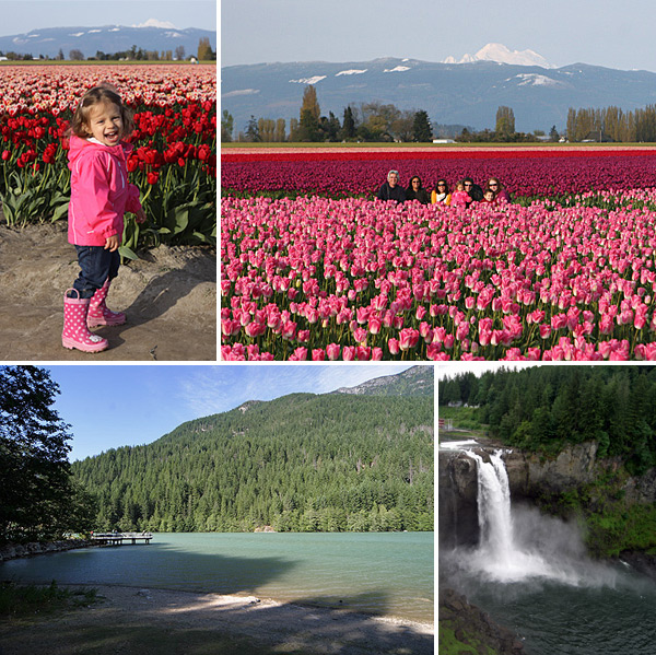 Tulipas em Skagit Valley, Diablo Lake e Snoqualmie Falls: passeios lindos nos arredores