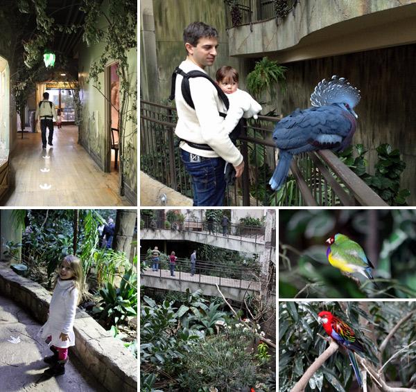 Passeando no Bird Kingdom em Niagara Falls