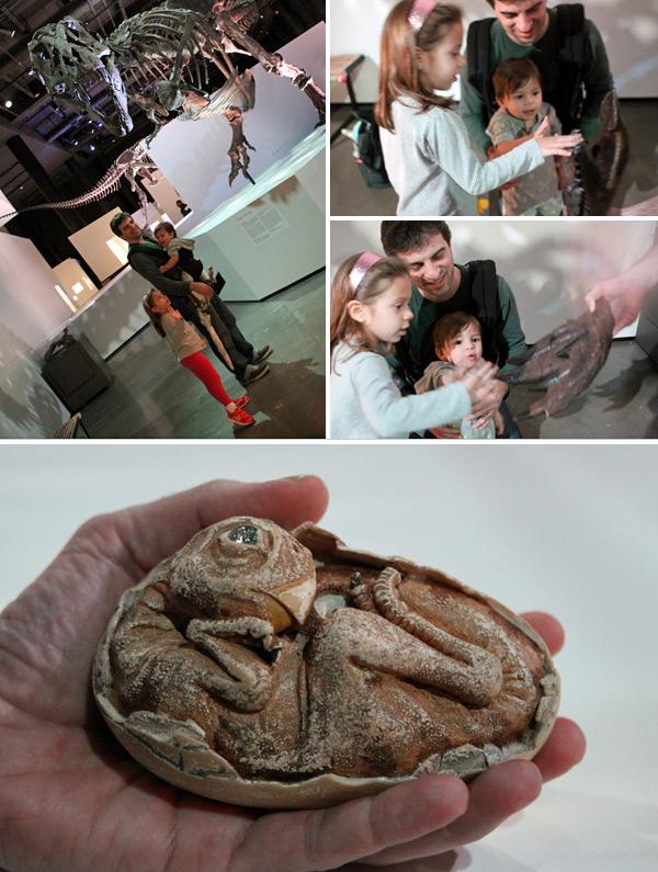 Julia e Eric vendo os fósseis de mandíbulas de dinossauros carnívoros e herbívoros