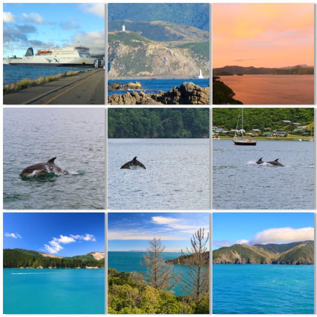 Imagens do Segundo dia da viagem (Travessia Cook Strait & Marlborough Sounds)