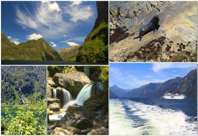 Décimo quarto dia: Explorando o Doubtful Sound na região do Fiordlands