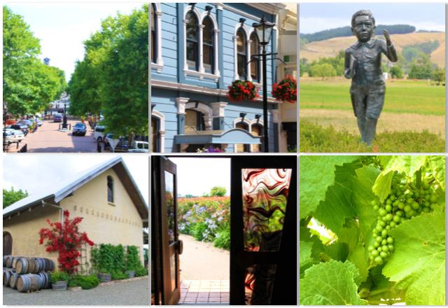Vígésimo dia de viagem: Explorando a região e os vinhos de Nelson