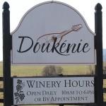 Aprendendo sobre Vinhos na Doukenie Winery