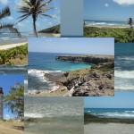 Barbados com crianças: a viagem da Chris Lima