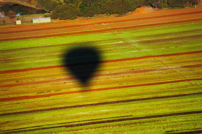 Sombra do balão em uma das fazendas