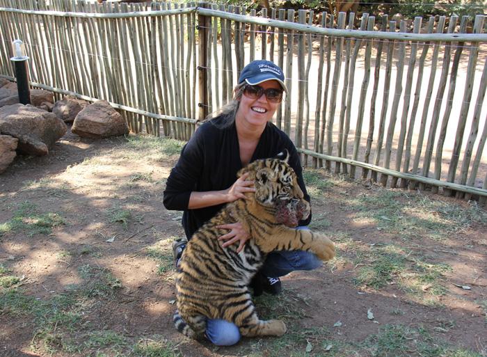 Abraçando o tigrinho