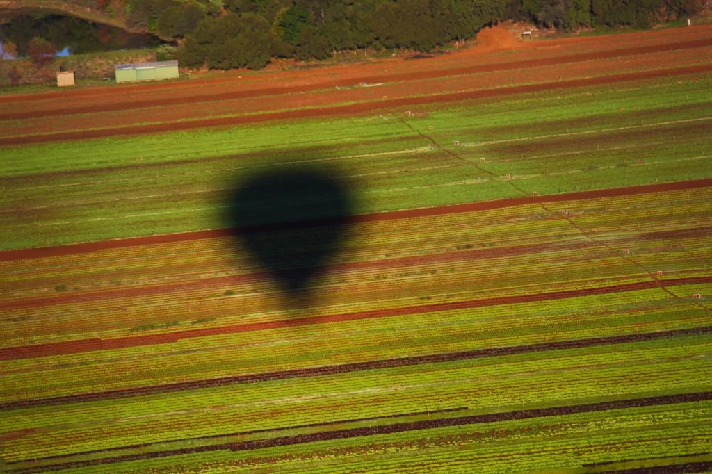 Do alto do balão