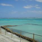 Punta Cana com a Giu