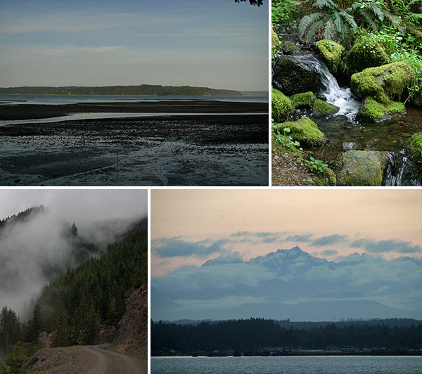 A Olympic Peninsula é enorme e tem paisagens bem variadas