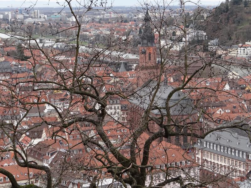 Heidelberg_Aprendiz_de_Viajante_ (11)