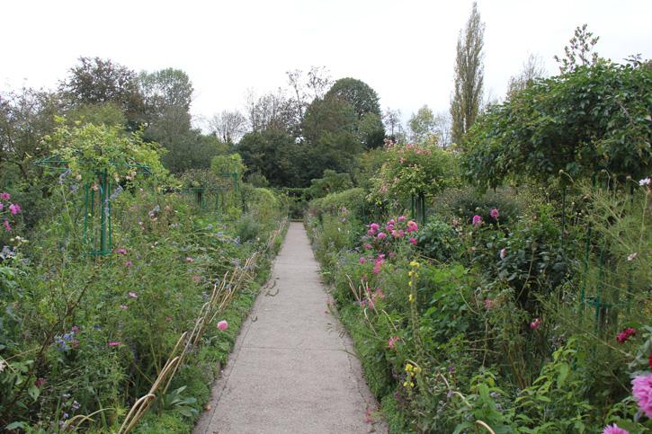 Jardim em frente a casa