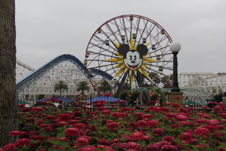 Disney's California