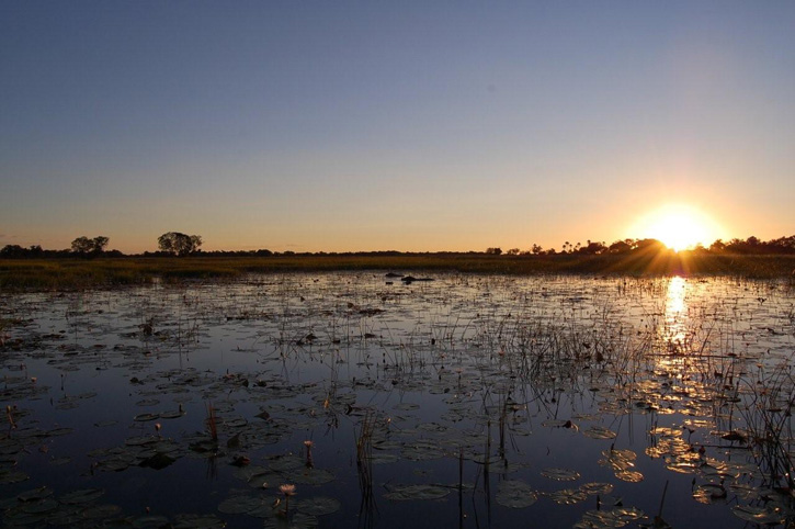 Botswana 2012- addititonal 455_1
