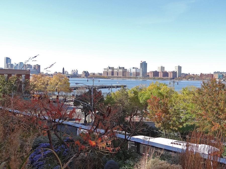 The High Line_AdV (13)