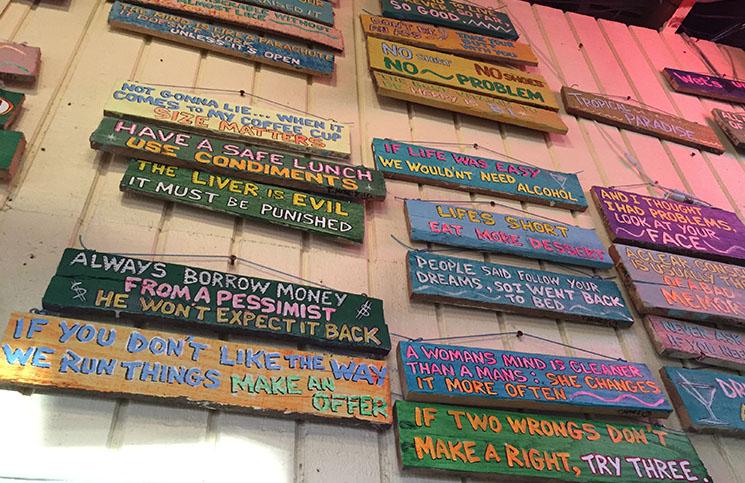 paredecaddys
