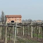 Itália: Ferrari, Balsâmico, Lambrusco e Queijo na Emilia-Romagna