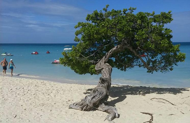 Planejando a viagem para Aruba