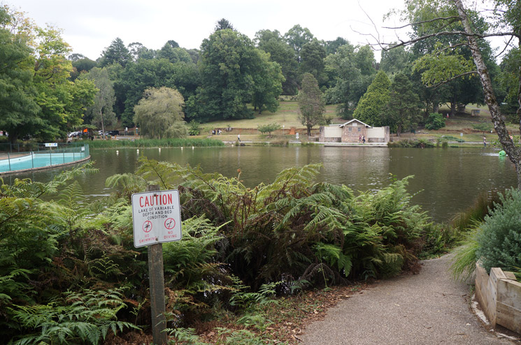 Melbourne-Puffing-Billy-56