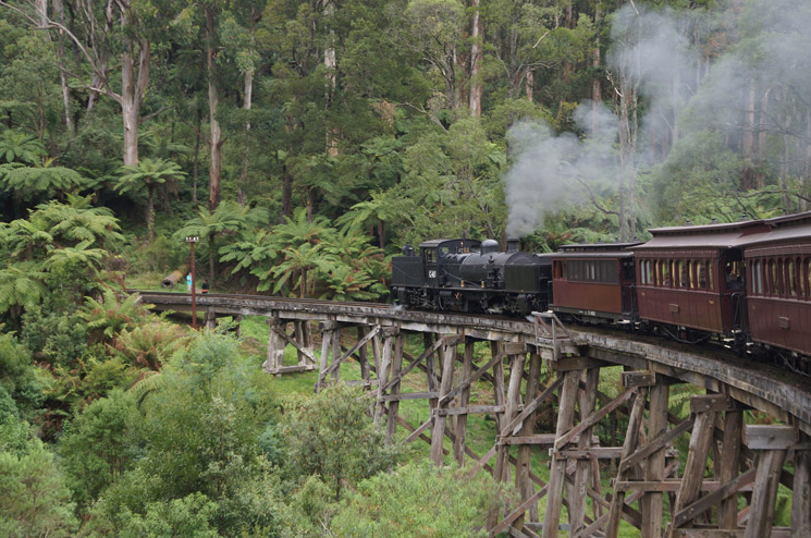 Melbourne-Puffing-Billy-63