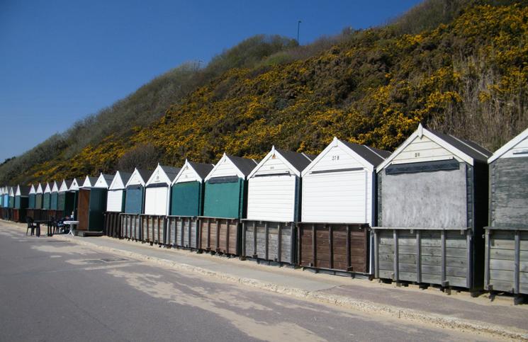 Bournemouth (7)