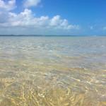 Maragogi em Alagoas: Mini guia para planejar sua viagem