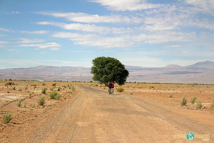 atacama-estrada-do-deserto-foto-viagem-primata